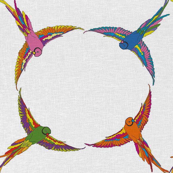 Loros Círculos 1